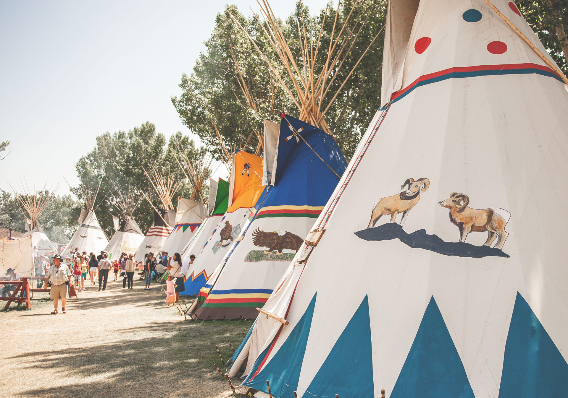 Experience Treaty 7 culture at the Elbow River Camp